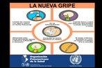 Detalhe de fôlder da Organização Panamericana da Saúde, com informações sobre os cuidados pessoais a serem adotados para prevenir a gripe H1N1. Palavras-chave: Gripe. H1N1. Escola. Fôlder. Organização Panamericana da Saúde.