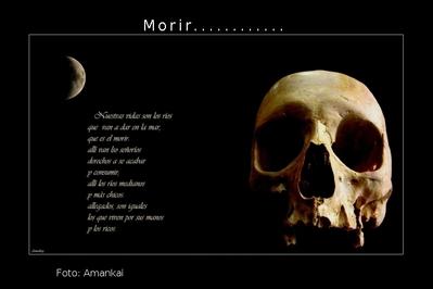Morrir Disciplina Língua Estrangeira Moderna